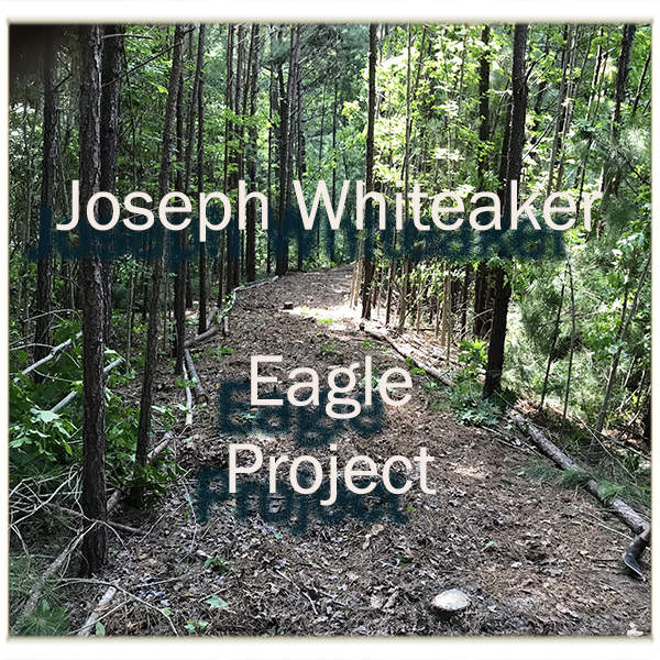 eagleproject05sq