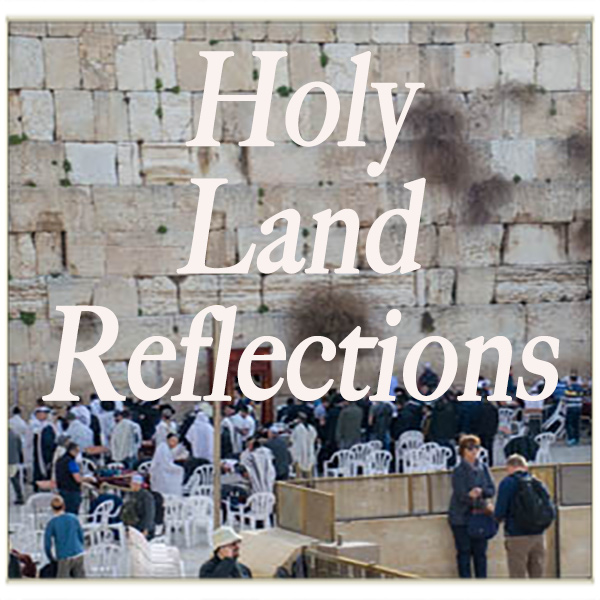 holylandreflections01sq